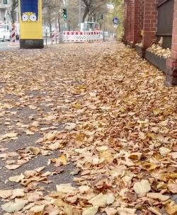 Herbstlaub auf Bürgersteig